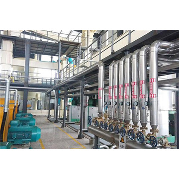 3000t/d Oilseed Pressing Production Line