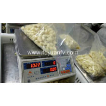 Best Quality for Bulk Fresh Peeled Garlic Peeled Garlic to Euro market export to Suriname Exporter