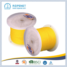 China for PE Twisted Plastic Monofilament Rope High Stregth PE Material Ropes With No Joins supply to France Factory