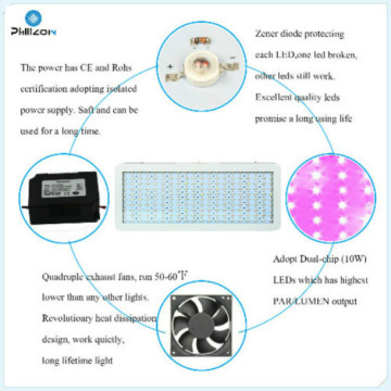 High Yield LED Grow Lights for Indoor Plants China Manufacturer