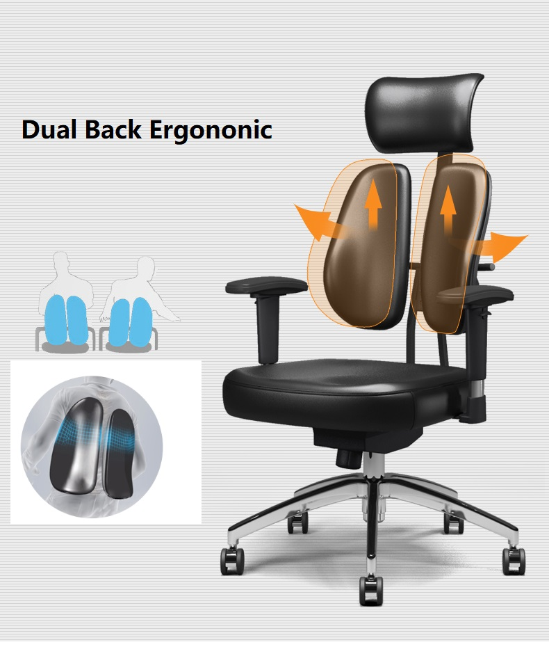 Dual-Back Ergonomic Office Chair function
