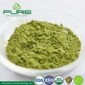 High Quality Organic Green Tea Powder