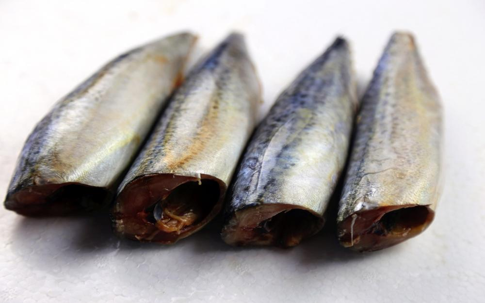 Sea Frozen Mackerel HGGT