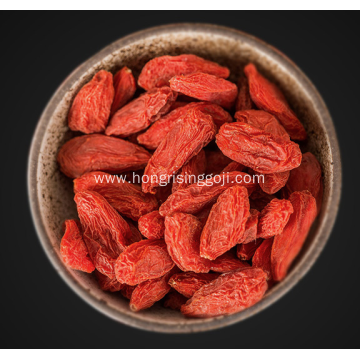 Ningxia Goji Berry New Crop