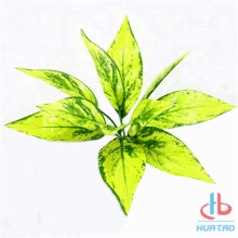 Artificial Yellow Anthurium Leaves