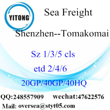 Shenzhen Port Sea Freight Shipping To Tomakomai