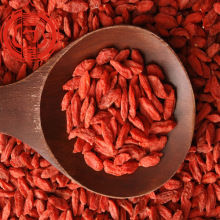 The Anti-aging goji berries dried fruits