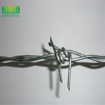 Galvanized barded wire fence