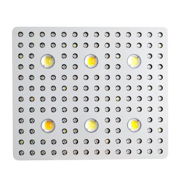 Lelei 3000 watt COB Led Grow Light