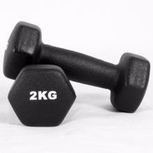 ODM for Neoprene Coating Dumbbell 2 KG Neoprene Dumbbell supply to Bangladesh Supplier
