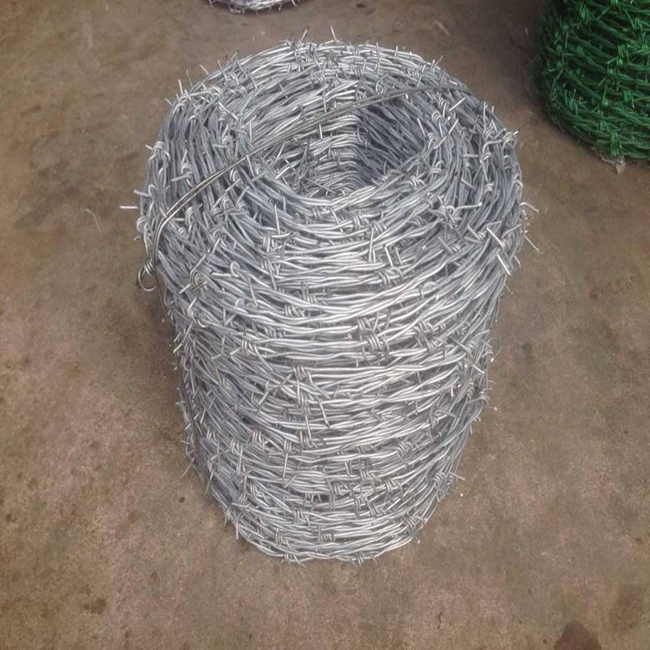 Barbed Wire Mesh17