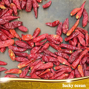 Red Chili Pepper Import Pepper Chilli Pepper Buyer