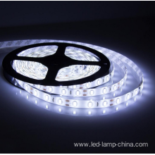 Best Price for for Led Office Lighting General lighting white light SMD5050 12V export to Saudi Arabia Manufacturers