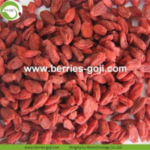 Wholesale Nutrition Natural Organic Dried Goji