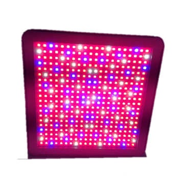 150W 300W GreenW Greenhouse Full Spectrum LED e Hola Leseli