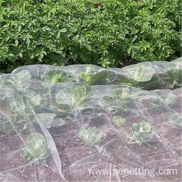 140gsm 50Mesh 4m*100m Greenhouse Insect Netting