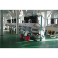500t/d Oilseed Pretreatment Production Line
