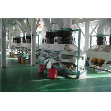 Best Quality for Oilseed Crushing Flaking 500t/d Oilseed Pretreatment Production Line supply to Kiribati Manufacturers