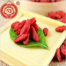 A Grade Dried Goji Berry Bulk Goji Berries
