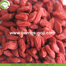 Lose Weight Natural Dried Nutrition Tibetan Goji
