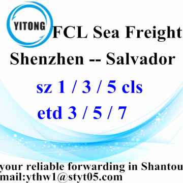 From Shenzhen to Salvador Ocean Freight Shipping Agent