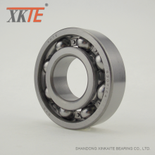 Ball Bearing For Ultra High Molecular Polyethylene Roller