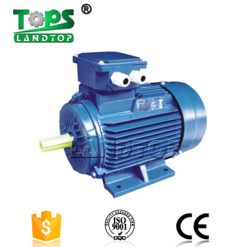 Y2 YX3 YE2 Electric AC Motor IP54/IP55 THREE-PHASE
