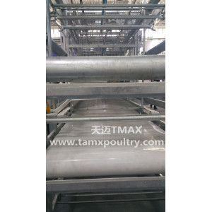 SHINE Poultry Litter Conveyor