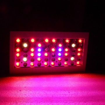 X300 600w high PPFD led grow lighting