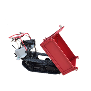 Rc hydraulic tipper dumper truck in Pakistan