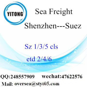 Shenzhen Port LCL Consolidation To Suez