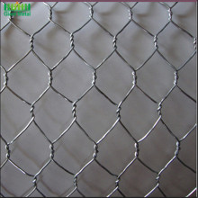 Double Twisted PVC Coated Chicken Poultry Wire