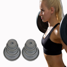 Best quality and factory for Olympic Bumper Plates High Quality Barbell Weight Plates export to Iraq Supplier