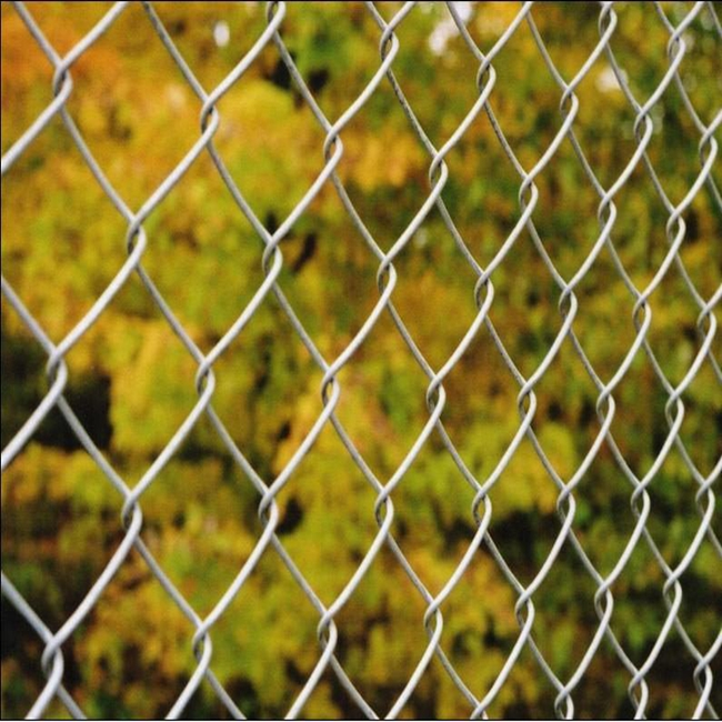 chain link wire mesh31