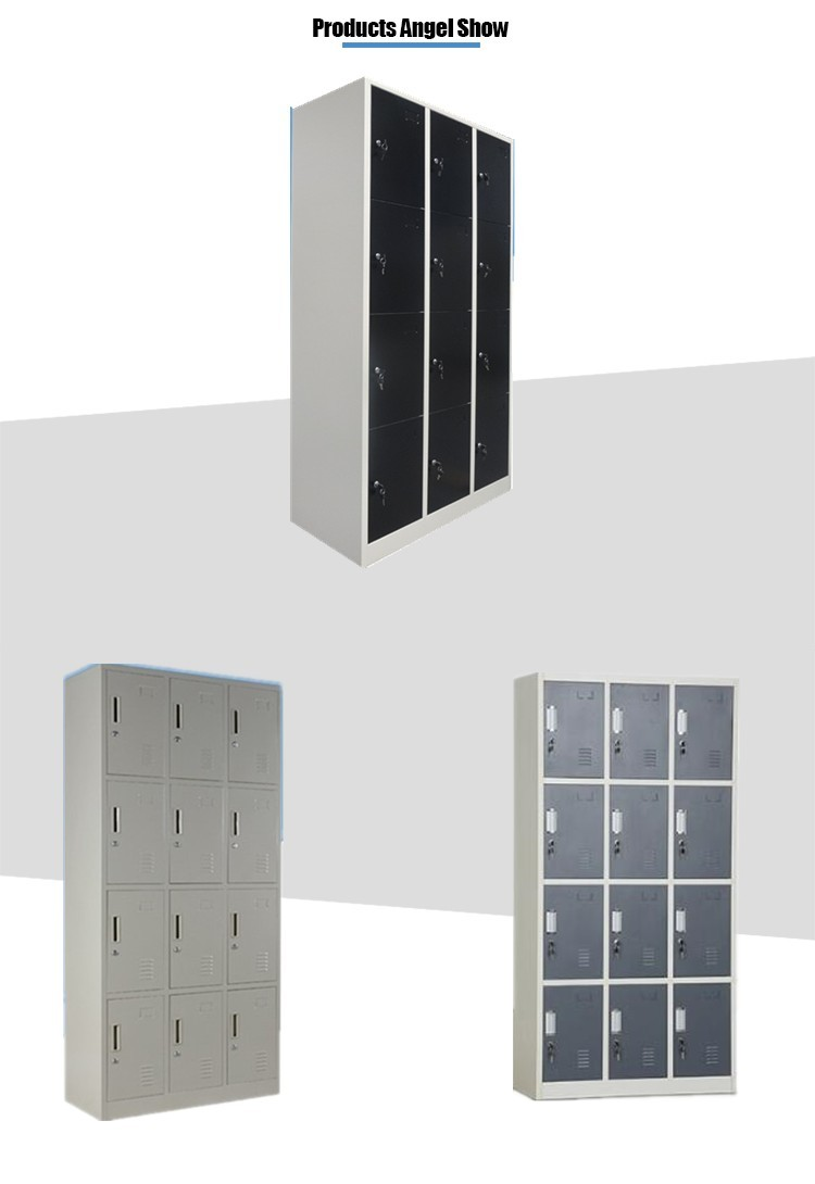 Steel Twelve Door Locker