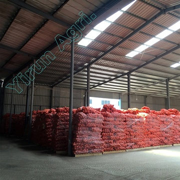 Top Grade Fresh Onions with Best Variety