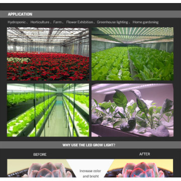 Поўны завод Spectrum Grow Тонкі LED Grow Light