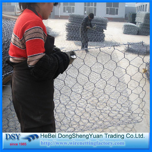 Chicken Wire Net Protection Fence