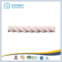 China for China Cotton Twist Rope,Cotton Rope,White Twisted Cotton Rope,3-Strand Twisted Cotton Rope Factory Good Price Natural Cotton Rope Hot Sale export to Belize Wholesale