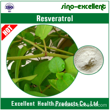 Resveratrol 98%(Giant Knotweed Extract)