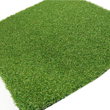 Artificial grass for golf field