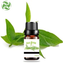 100% Pure Natural Tea Tree Essential Oil