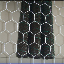 Hot Dipped Galvanized Hexagonal Poultry Wire