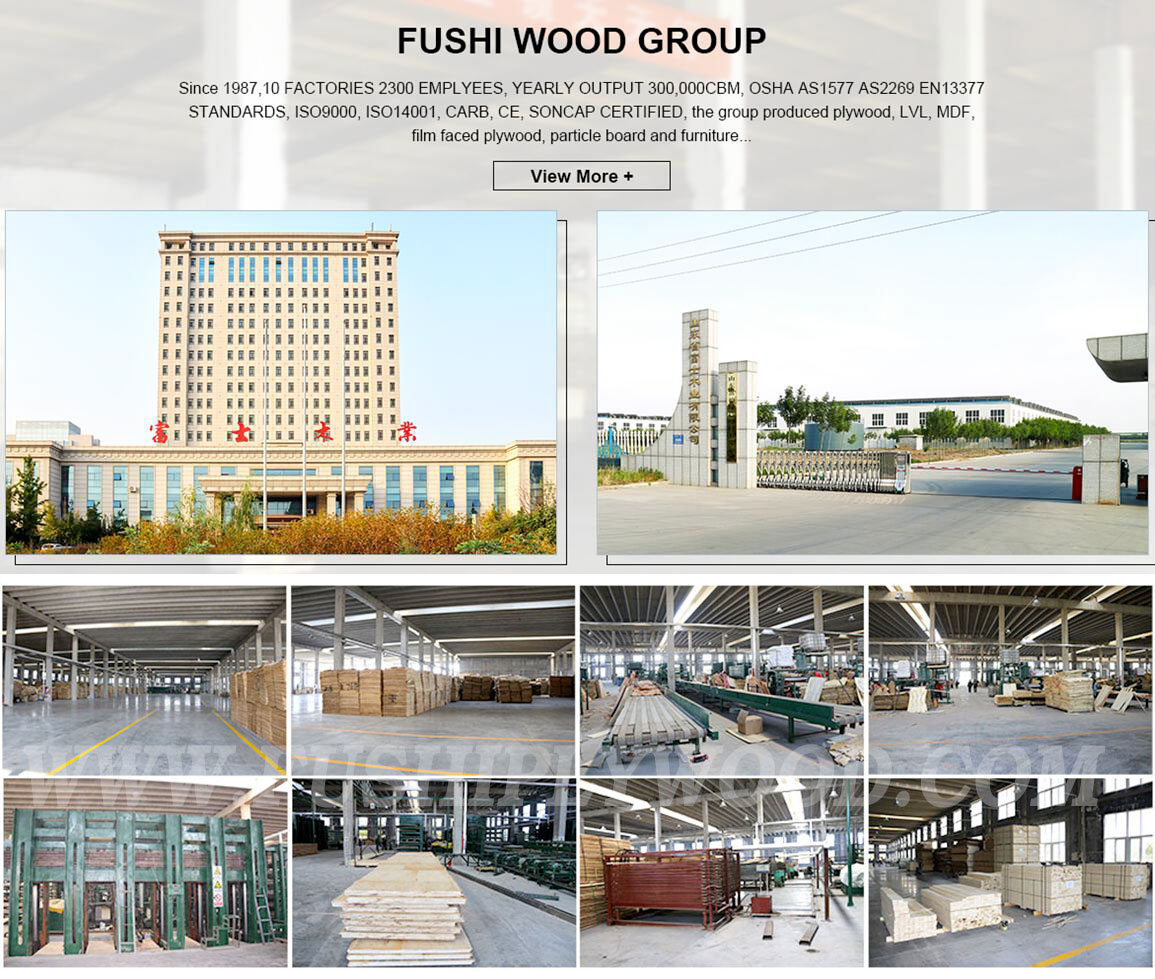 Fushi Wood Group New Factory