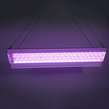 Full Spectrum Priemyselné Led Grow Light 150W