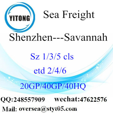 Shenzhen Port Sea Freight Shipping To Savannah