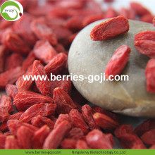 High Quality Super Food Dried Goji bayas