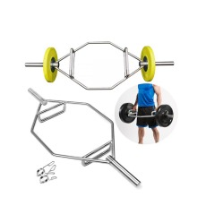 China for Olympic Barbell Hex Crossfit Weight Lifting Bar supply to Equatorial Guinea Supplier