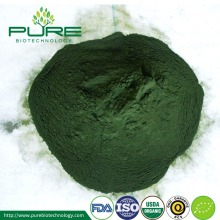 Spray dried Organic Spirulina Powder