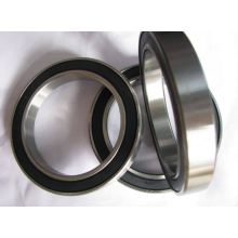 Single Row Deep Groove Ball Bearing (61876)